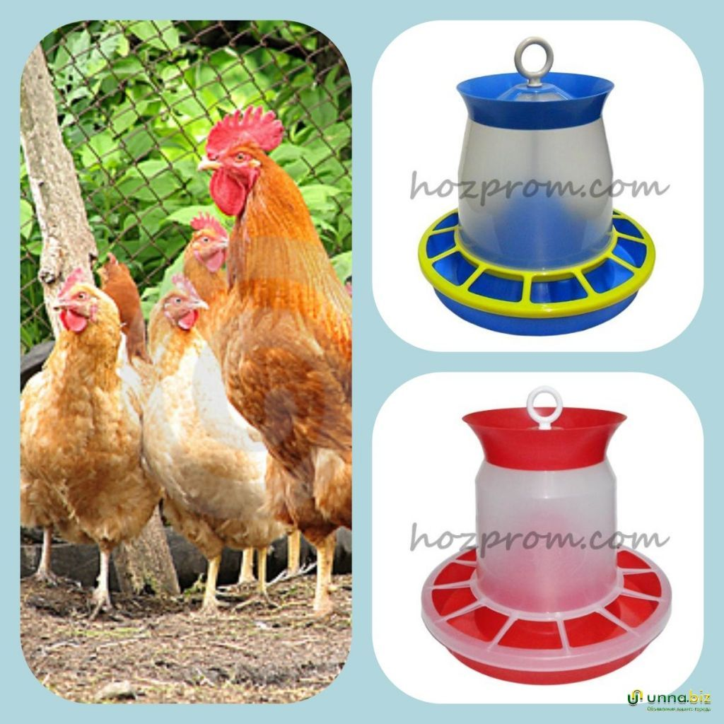 Бункерные кормушки для кормления домашней птицы любого возраста