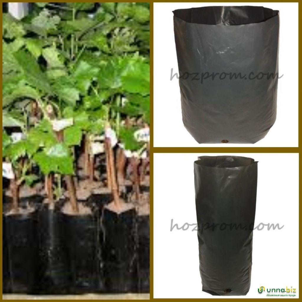 Пакеты для саженцев Выращивание хвойных растений Выращивание растений